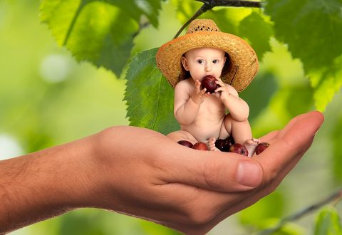 3 Tips To Know When Making Baby Food